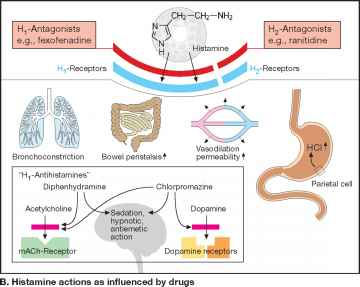 side effects of anticholinergics #10