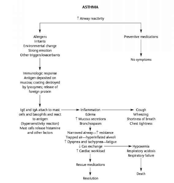 Flow Chart Asthma Care Plan