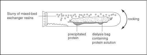 Dialysis Protocol Protein Pictures